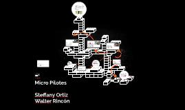 Micro Pilotes