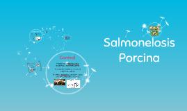 Salmonelosis Porcina