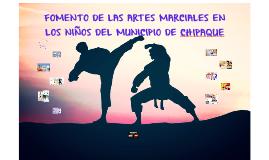 FOMENTO DE LAS ARTES MARCIALES EN NIÑOS  EN EL MUNICIPIO DE
