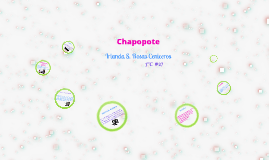 Copy of CHAPOPOTE