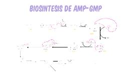 biosíntesis de los AMP-GMP
