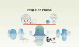 Copy of PESAJE DE CARGA.