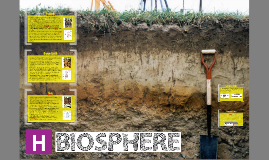 CfE H Geography / Physical Geography: Biosphere - Revision