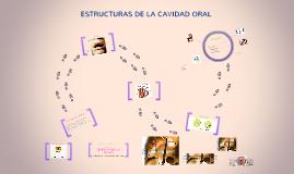 ESTRUCTURAS DE LA CAVIDAD ORAL