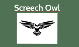 Copy of Screech Owl