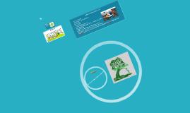 Copy of Agenda o Programa 21.  Acciones para la sostenibilidad econó
