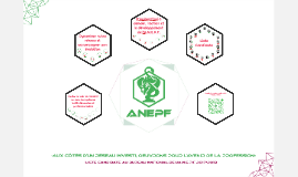 """Copie de Profession de foi de la liste candidate au bureau de l'ANEPF 2017-2018 """"Aux côtés d'un réseau investi, œuvrons pour l'avenir de la profession"""""""