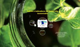 Índices e Indicadores del Desarrollo Sustentable