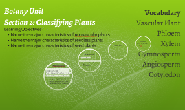 Plant & Ecology Unit: Section 2 Classifying Plants