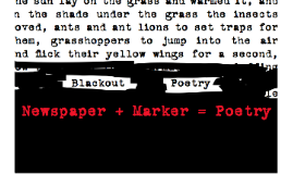 Blackout Poetry (2013)