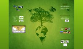 ecobuilding arquitetura sustentável