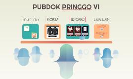 PUBDOK PRINGGO VI