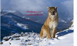 Finding your Leadership Fit