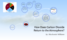 How Does Carbon Return to the Atmosphere?
