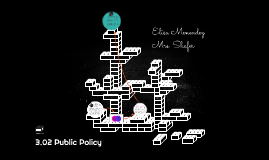 3.02 Public Policy