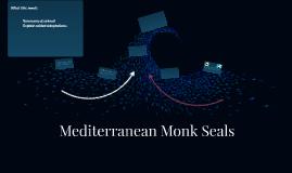 Mediterranean Monk Seals