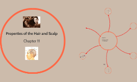 Properties of the Hair and Scalp