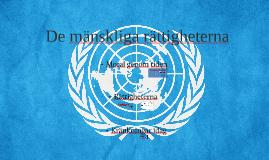 Copy of De mänskliga rättigheterna