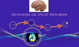 DO HUMANS USE 10% OF THEIR BRAIN