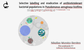 Selective labelling and eradication of antibiotictolerant ba