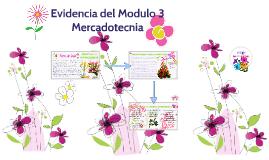 Evidencia 3, Mercadotecnia
