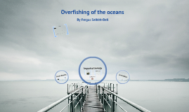 Net fishing/overfishing of the oceans