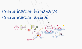 Copy of Comunicación humana VS Comunicación animal