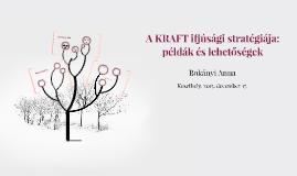 A KRAFT ifjúsági stratégiája: példák és lehetőségek