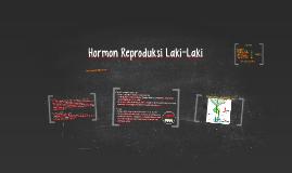 Hormon Reproduksi Laki-Laki