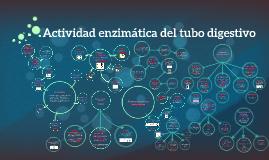 Copy of Actividad enzimatica del tubo digestivo