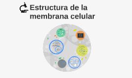 Copy of Estructura de la membrana celular