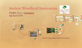 Ancient Woodland Restoration