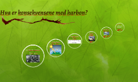 Hva er konsekvensene av karbon?