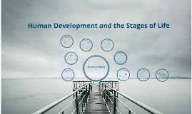 Copy of Human Development and the Stages of Life: Death and Dying