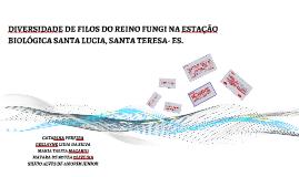 DIVERSIDADE DE FILOS DO REINO FUNGI NA ESTAÇÃO BIOLÓGICA SAN