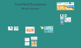 Coral Reefs Persuasive Speech Visual Aid