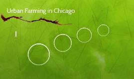 Urban Farming in Chicago