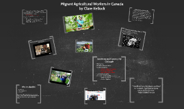 Migrant Farm Workers in Canada