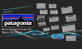 Copy of Patagonia