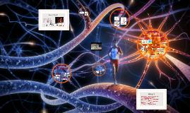 Neurovigilia: Pares V, VII, IX, XI y XII