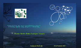 Copy of PRUEBAS DE SOFTWARE