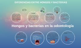 DIFERENCIAS ENTRE HONGOS Y BACTERIAS
