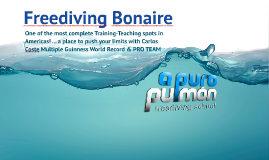 Copy of Freediving in Bonaire