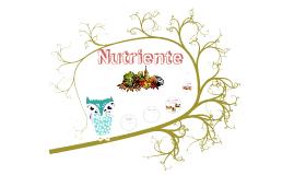Copy of Concepto,clasificación, función y fuente alimentaria de nutriente