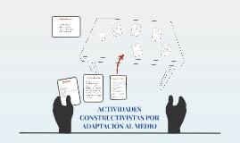 2. ACTIVIDADES CONSTRUCTIVISTAS POR  ADAPTACIÓN AL MEDIO