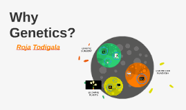 Why Genetics?