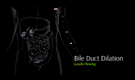 Bile Duct Dilation