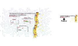 Processos biológicos I - Transporte de íons e moléculas através da membrana celular