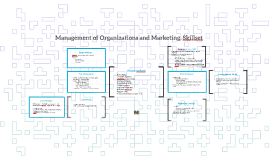 Management of Organizations and Marketing, Skillset