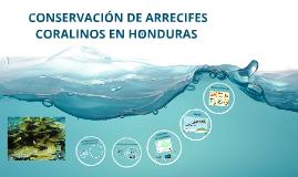 Copy of Ecología Arrecifal